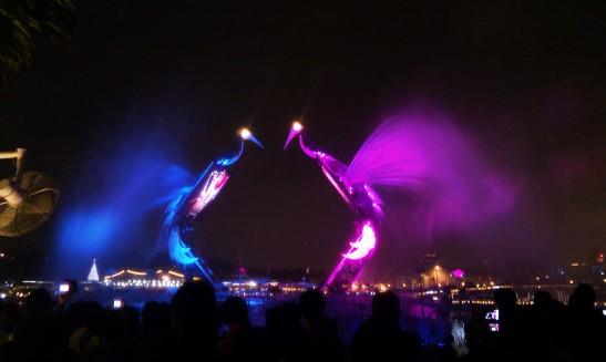 A water crane dance