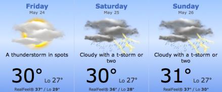 HK weather forecast